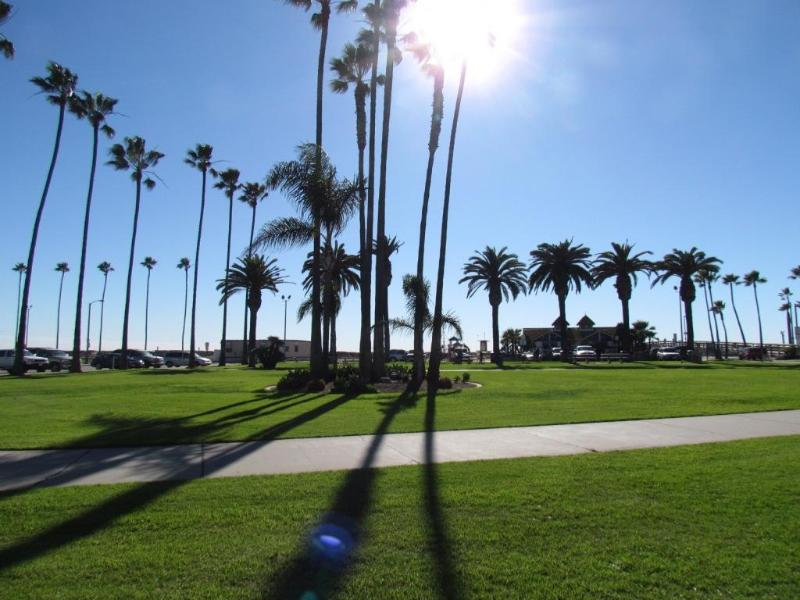 3 bedrooms - On the Beach! Up to 8 people - Image 1 - Newport Beach - rentals