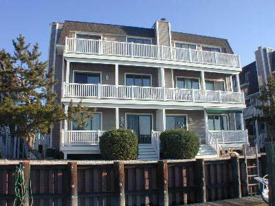 1318 Ocean Drive - Image 1 - Avalon - rentals