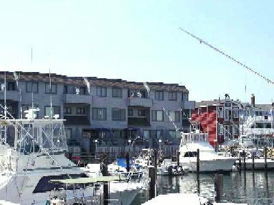 302 83rd Street - Image 1 - Stone Harbor - rentals