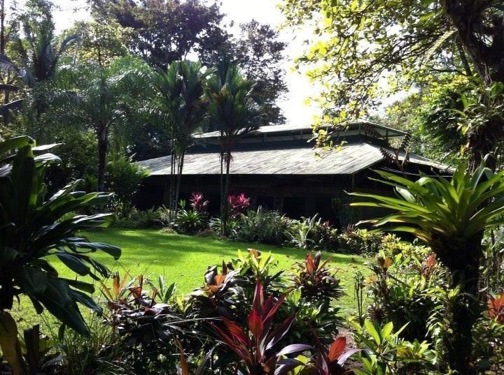 La Choza del Manglar, Main Lounge - Choza del Manglar Puerto Jimenez OSA Peninsula - Puerto Jimenez - rentals
