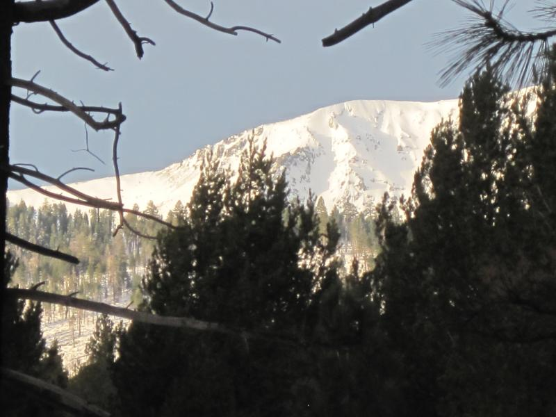 Mt. Tallac views - Cabin on the edge of the meadow & woods & river - South Lake Tahoe - rentals