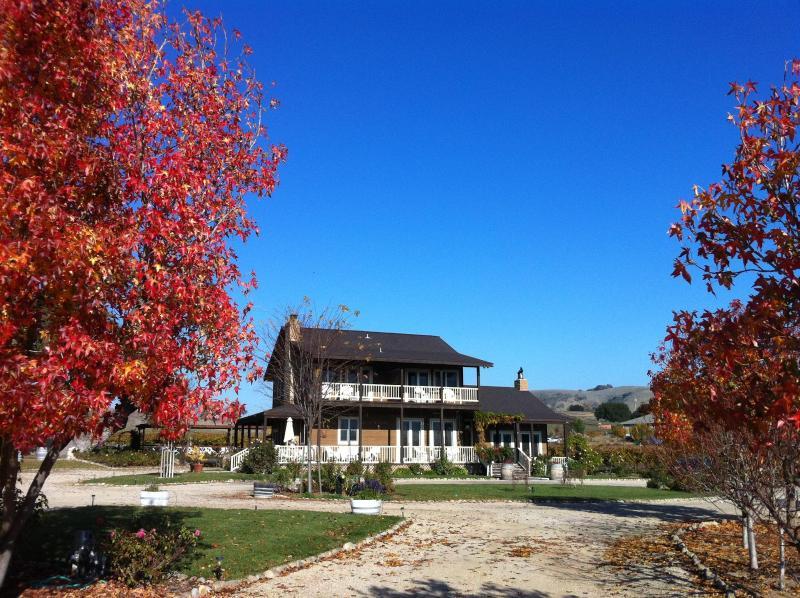 Honey Oak House - Honey Oak House - Templeton - rentals