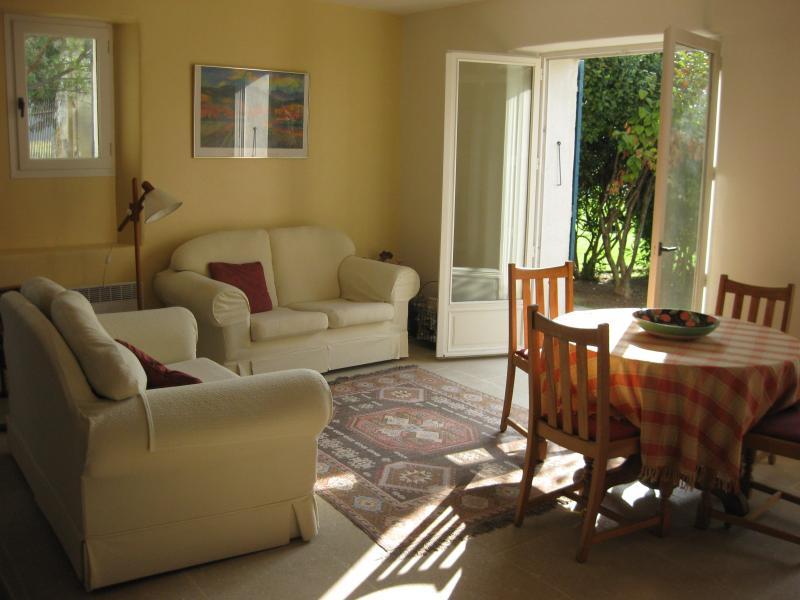 Lounge - 2 bedroom cottage in quiet vineyard in Provence - Mazan - rentals