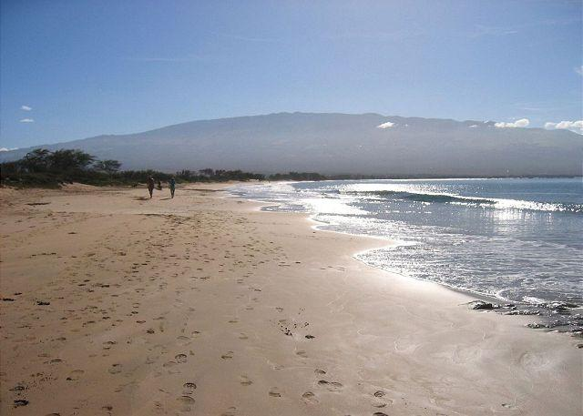 Miles of Sandy Beach Across from The Maui Beach Resort - Maui Beach Resort #C-403, Panoramic Ocean View, Sleeps 3, Great Rates!!! - Kihei - rentals