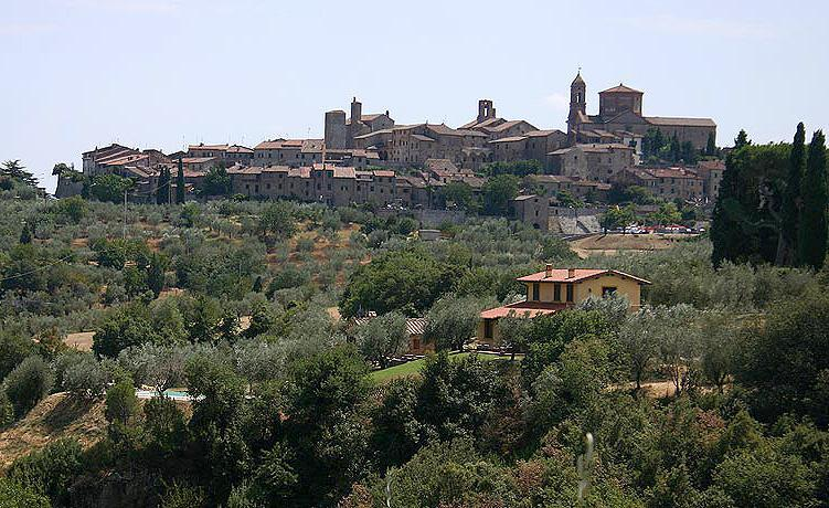 Villa Ulivi - Image 1 - Lucignano - rentals