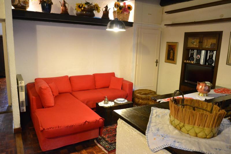 Best apartment in Rome's heart, Campo dei Fiori - Image 1 - Rome - rentals