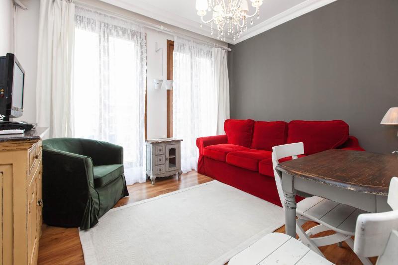 living room - Cozy&Central&Quiet Apt in Cihangir-Taksim,Istanbul - Istanbul - rentals