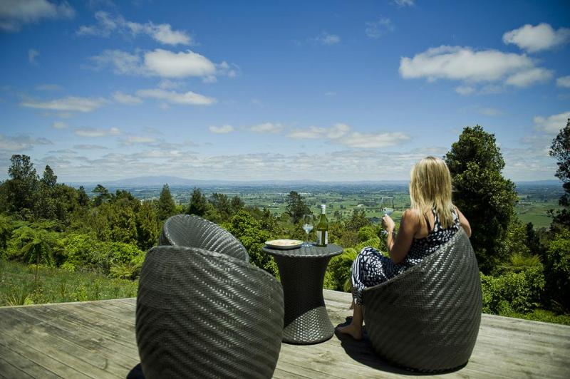 Stunning view over native bush reserve and the entire Waikato area! - The Top House, Cambridge, NZ - Cambridge - rentals