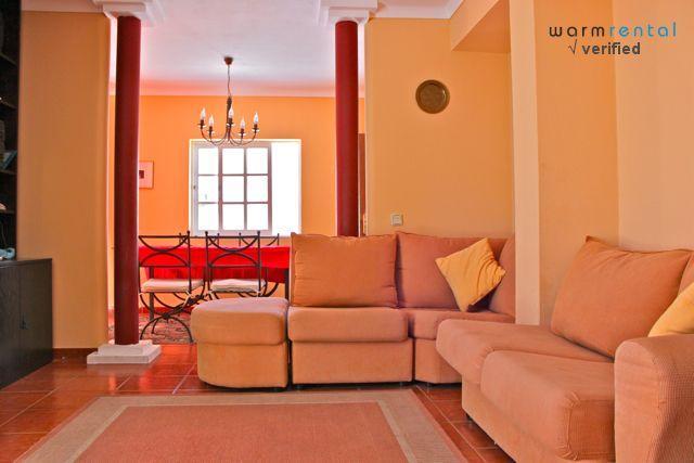 Living Room  - Hambo Apartment - Portugal - rentals