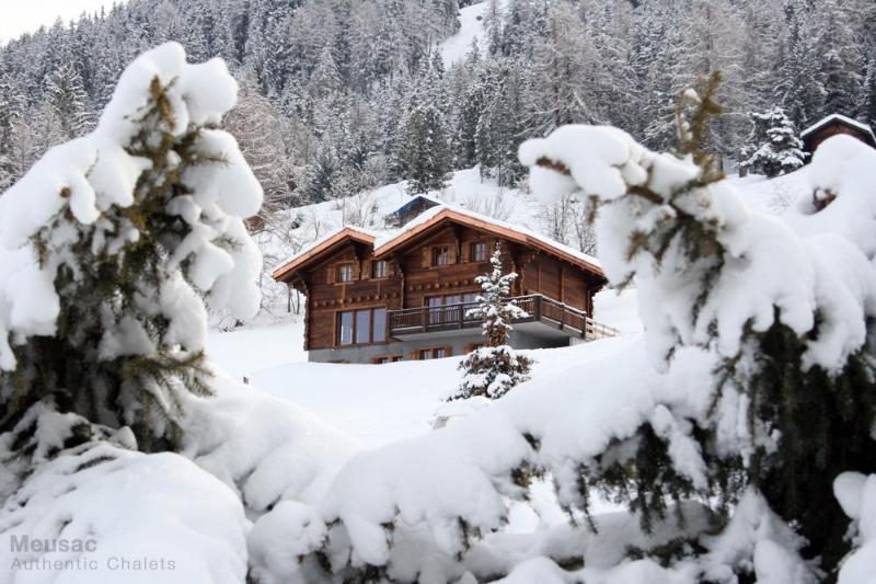 Chalet Altitude 1600 viewed from across the ski slope on a fresh snowy day - Large Ski-in/out upmarket chalet  Hammam & Jacuzzi - Nendaz - rentals