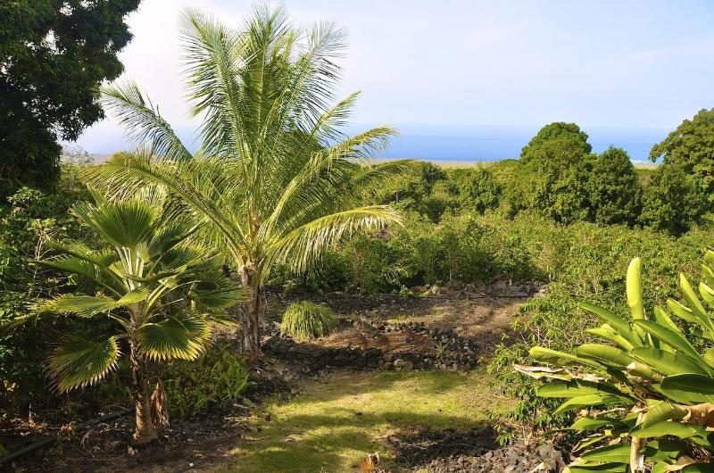 View to the ocean - Kope Mahi Vacation Home - Captain Cook - rentals
