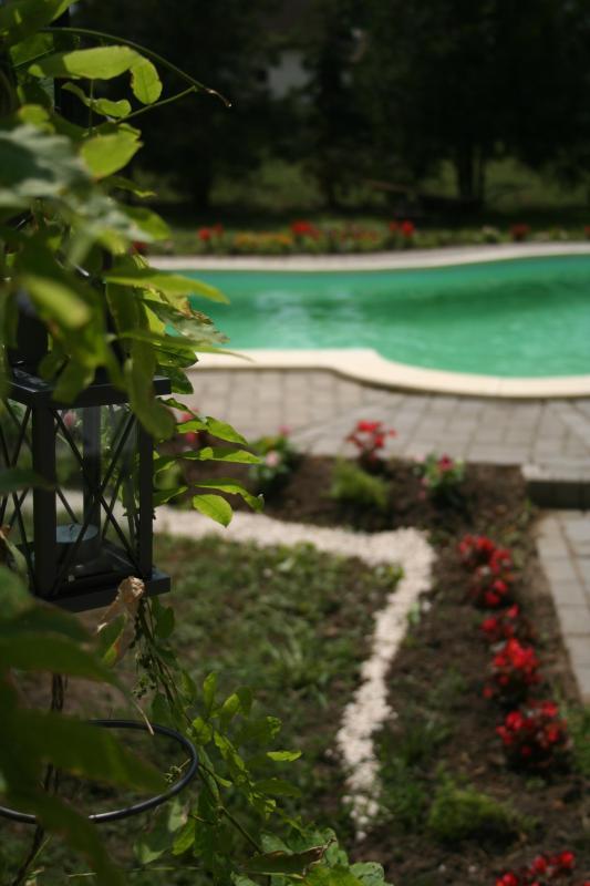Luxury House with Pool Tisza Lake - Image 1 - Tiszaujvaros - rentals