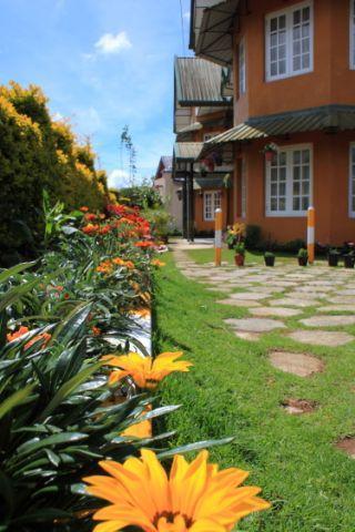 Bungalow Front - Lady Horton Bungalow, Nuwara Eliya, Sri Lanka - Central Province - rentals
