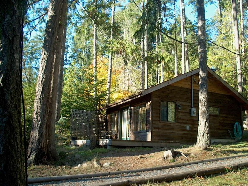 The cabin - Magic Lamp Cabin on St. Mary Lake - Salt Spring Island - rentals