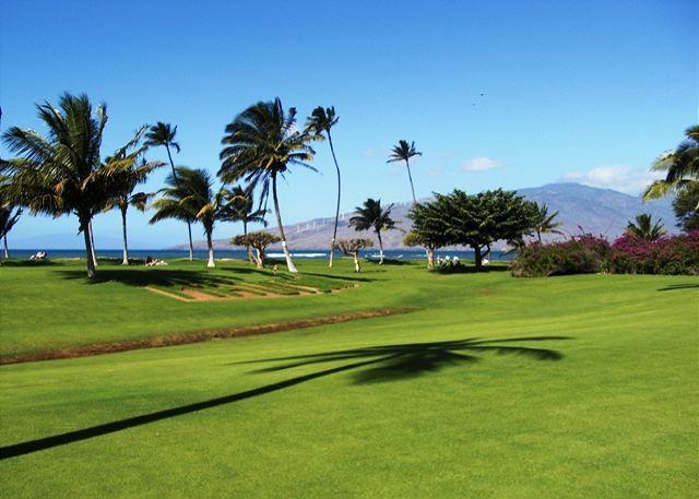 View from Condo - Maui Sunset 123B - Kihei - rentals