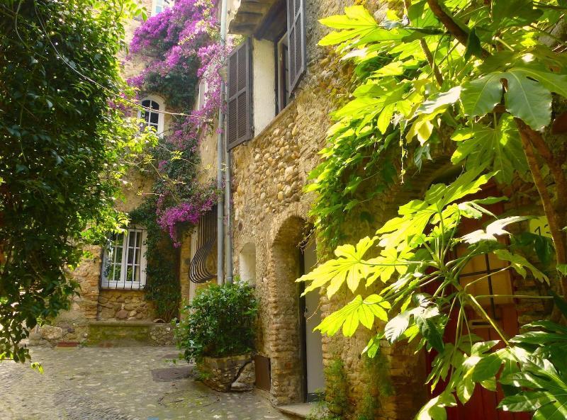 La Petite Pause Haut de Cagnes - Old Stone House With Terrace By Medieval Castle - Cagnes-sur-Mer - rentals