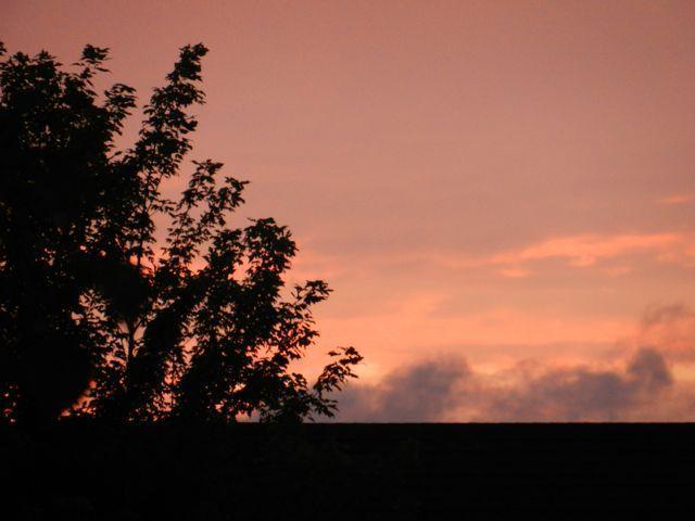 Sunset at Sun Lake Condominiums - Modern 3 Bedroom Condo, Sleeps 6+, 2 Miles to Disney - Kissimmee - rentals
