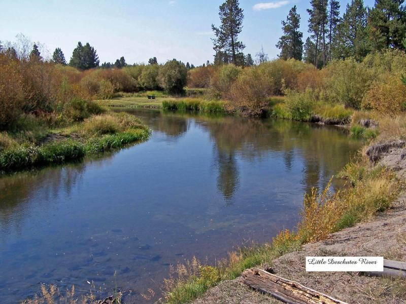 Little Deschutes River looking south - River Bend (Comfortable, River Front Property) - Bend - rentals