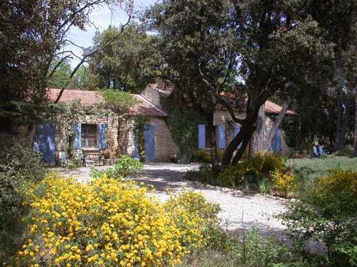 Garden - La Tres Grande Peyriere - Stone Villa With Pool - large wooded property - 3 bedrooms - - Mazan - rentals