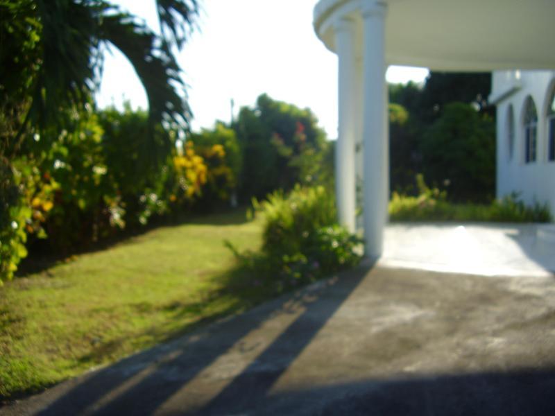 MY YARD - MY YARD Bed & Breakfast accommodation - Oracabessa - rentals