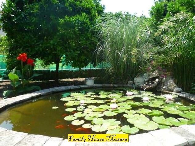 Family house Mozara - Image 1 - Slano - rentals