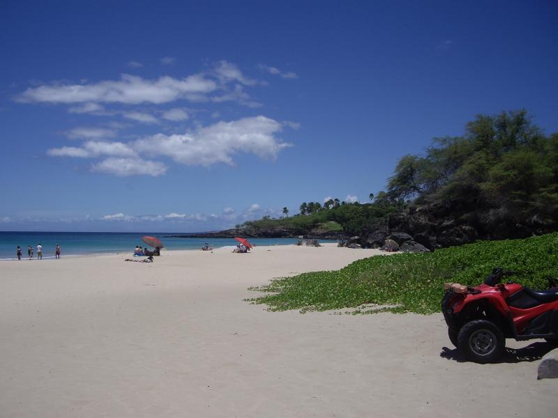 Hapuna Beach - Ocean View, Discount Golf, Clean, Central located - Waikoloa - rentals