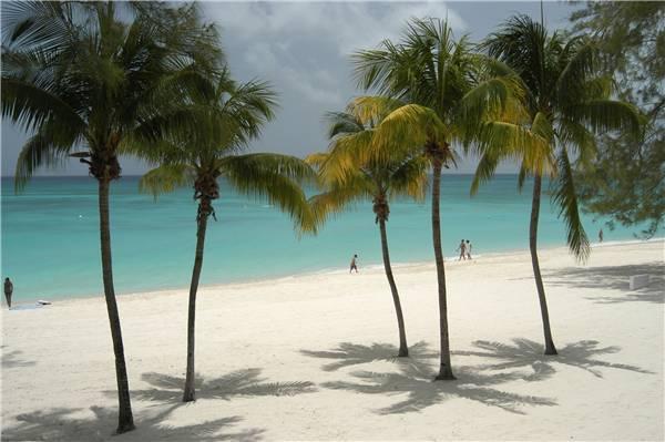 Casa Caribe #23 - Image 1 - Grand Cayman - rentals