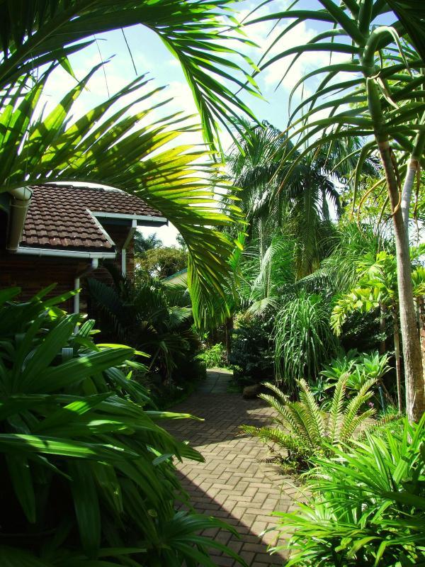 Tropical garden - Buya Futhi B&B - KwaZulu-Natal - rentals