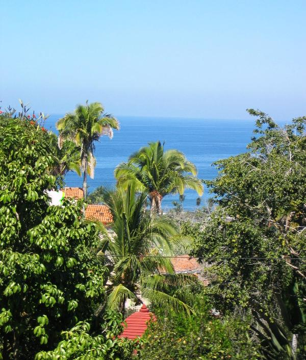 Casa Paz ocean view - Casa Paz on Gringo Hill - Ocean Views, Right in Town - Sayulita - rentals