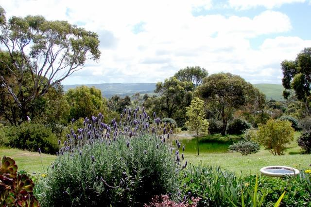 view from your room - Austiny Bed and Breakfast Accommodation - Victor Harbor - rentals