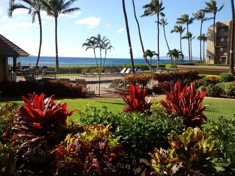 Your View - The Ocean Is Your Landscape - Maalaea - rentals