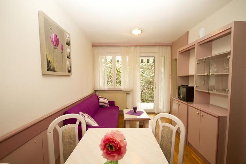 Maygut Apartments Portorož - Image 1 - Portoroz - rentals