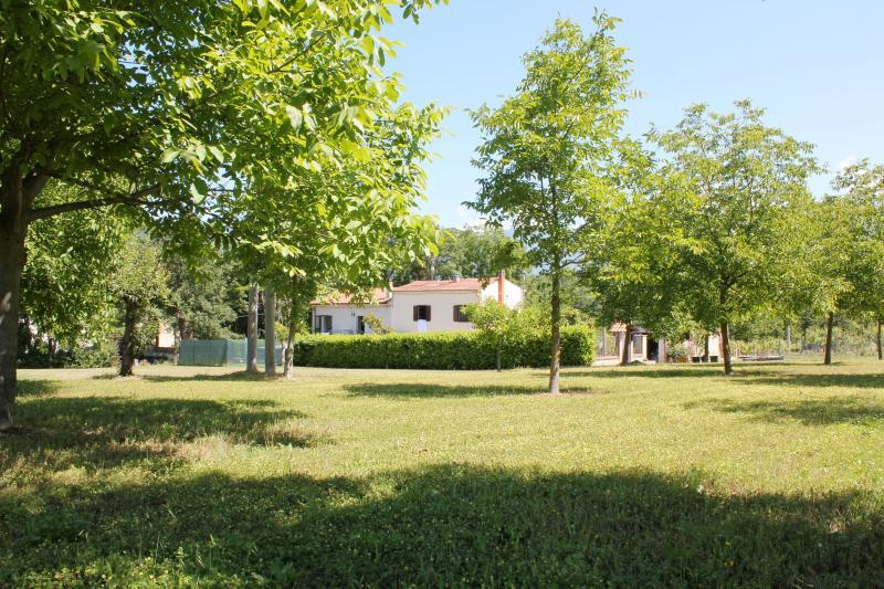 Villa Ulignano from our little picnic area - Villa Ulignano - Sulmona - rentals