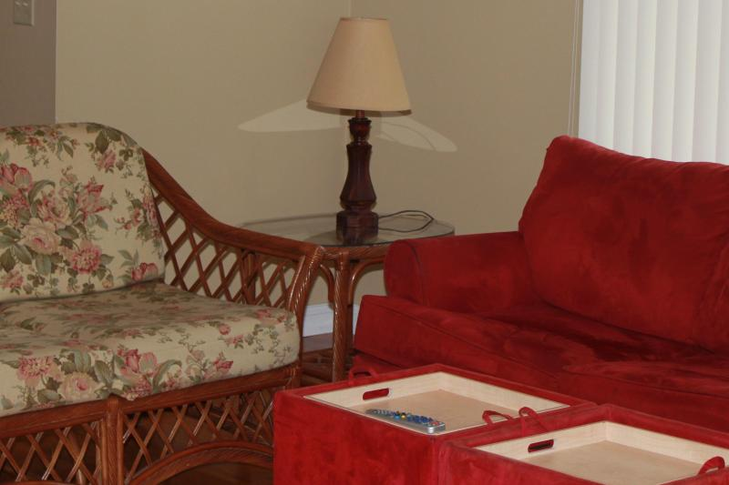 Livingroom (with hideabed couch) - Hickory Ridge Guest House - Albany - rentals