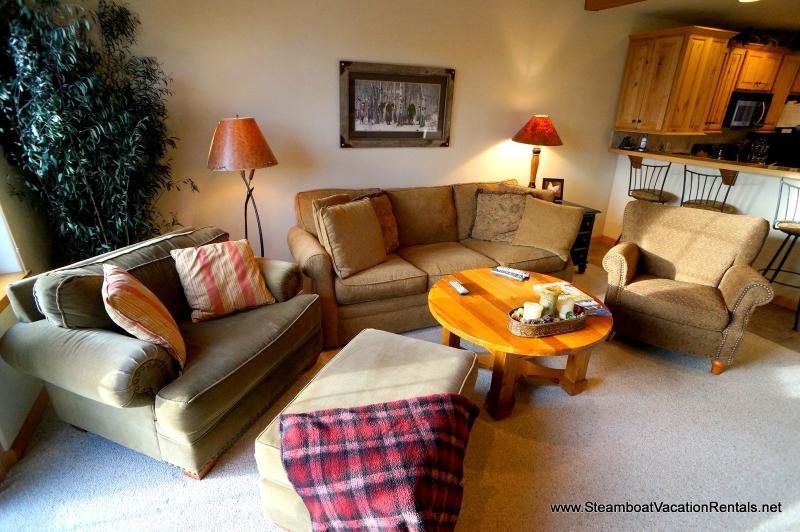 The Willows Town Home #1151 - Image 1 - Steamboat Springs - rentals