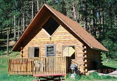 Washington Cabin - Washington Cabin with Hot Tub - Hill City - rentals