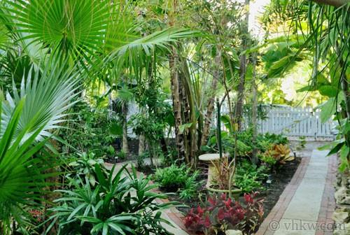 Elegant Key West Tree House ~ Monthly Rental - Image 1 - Key West - rentals