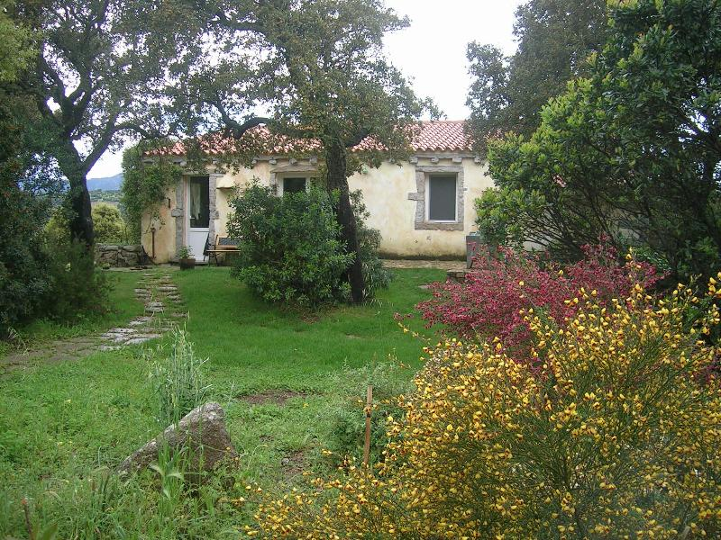 Bed and breakfast La Scala - Image 1 - Olbia - rentals