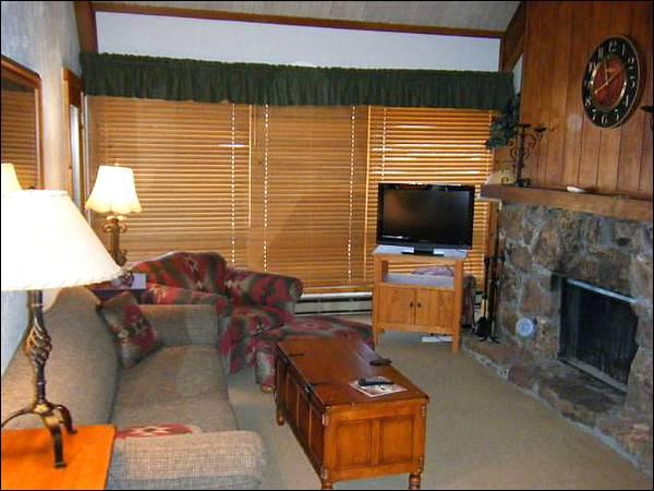 Living Room Includes a Wood-Burning Fireplace, Flat-Screen TV, and Sleeper Sofa - Mountain & Valley Views from this Condo - On the Winter Shuttle Route (1269) - Crested Butte - rentals