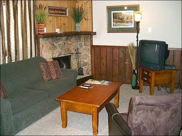 Living Room Includes a Sleeper Sofa, TV, and Fireplace - Comfortable Furnishings Throughout - Mountain Views (1339) - Crested Butte - rentals