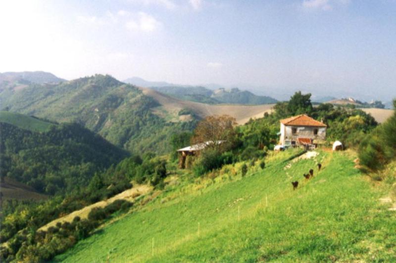 Ca' Agostino above Val di Loto e Val Foglia - Ca' Agostino B+B, Double Liberty, Guesthouse - Sassocorvaro - rentals