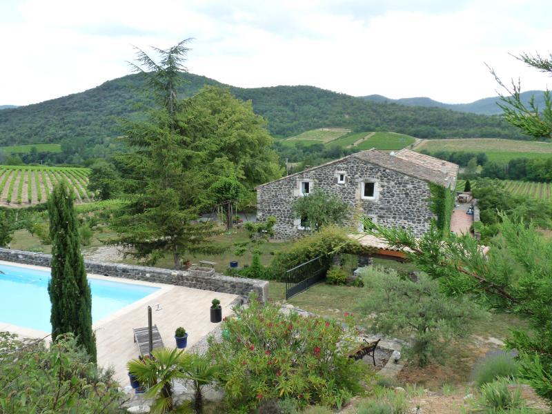 Le Mas et sa piscine - Mas du Tilleul-B&Bs - Saint-Thome - rentals