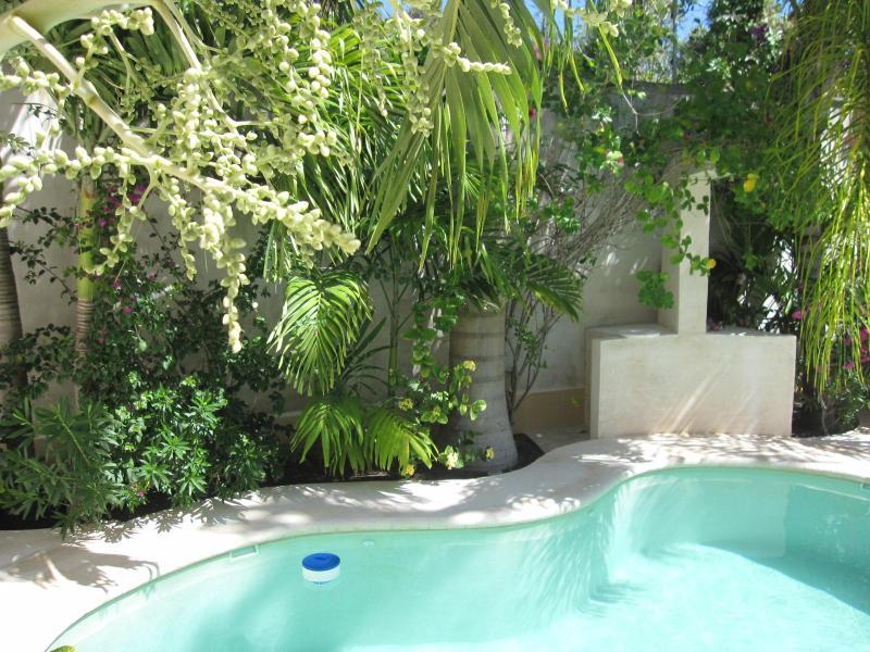 Villa Xa'An - Image 1 - Puerto Morelos - rentals
