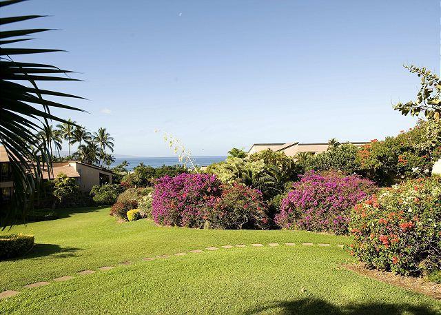 Wailea Ekahi #48A - Image 1 - Maui - rentals