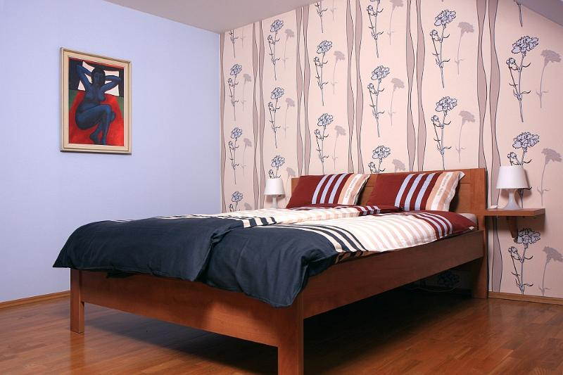 The bedroom (15 m²) has a double bed. - Apartment in Zlin - Zlin - rentals