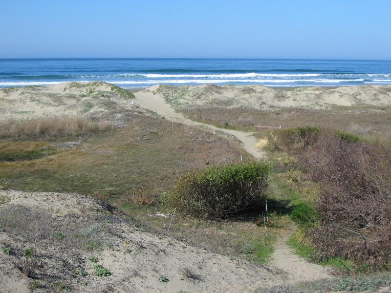 Beach View From Across The Street - Luxury Home Across the Street from Beach... - Morro Bay - rentals