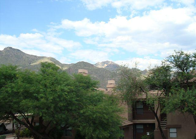 3 Bedroom Second Floor Newly Rennovated With Great Mountain Views - Image 1 - Tucson - rentals