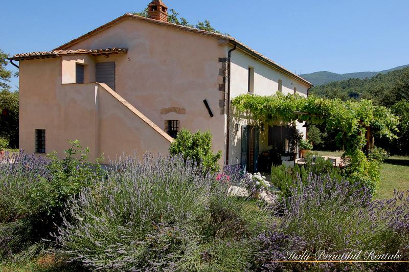 Charming 3 Bedroom Vacation Rental in Tuscany - Image 1 - Montalcino - rentals