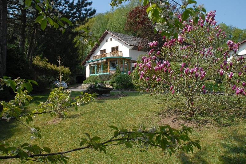 Villa Thalassa - Image 1 - Bitche - rentals