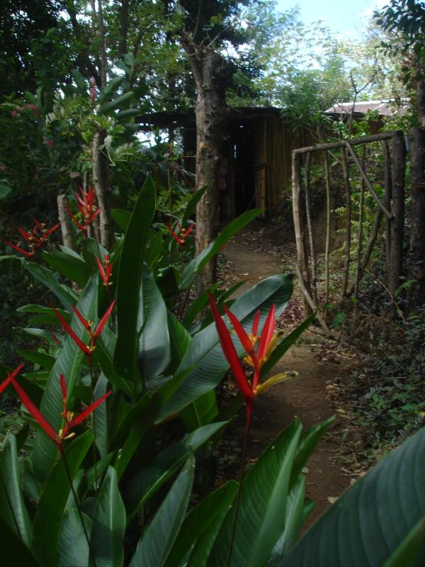 welcome to frangipani, Queens bury, Vermont - Bush Bar: cabin No 1. Frangipani - Kingstown - rentals